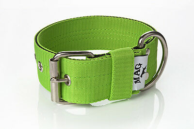 5cm Strong Nylon Dog Collar Large Breeds (staffordshire, pit bull, etc.) MAG