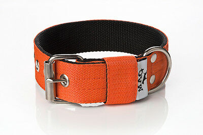 4cm Strong Nylon Dog Collar (english, staffordshire bull terrier, pitbull, etc.)