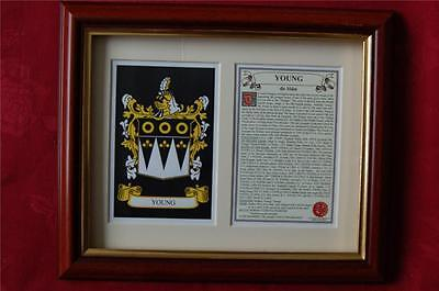 YOUNG Family FRAMED Heraldic Coat of Arms Crest + History + Tree