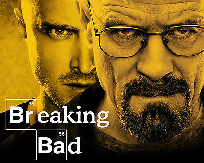 Cast of Breaking Bad Mini Poster, 8x10 Color Photo