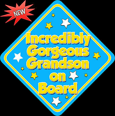 Incredibly Gorgeous Grandson Baby on Board Car Sign Non Personalised BriBlu Y