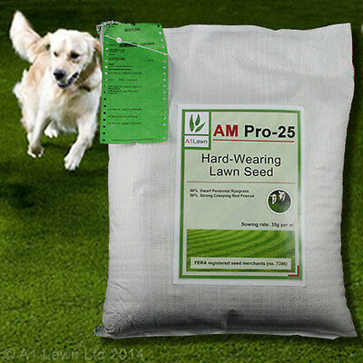 A1LAWN AM PRO-25 HARD-WEARING TOUGH LAWN GRASS SEED 10kg (DEFRA certified)