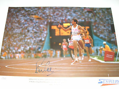 SEBASTIAN COE - OLYMPIC LEGEND - personally signed 22x16 LIMITED EDITION