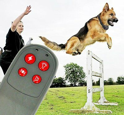 4in1 Remote Control Dog Training Electric Shock Collar CA#D