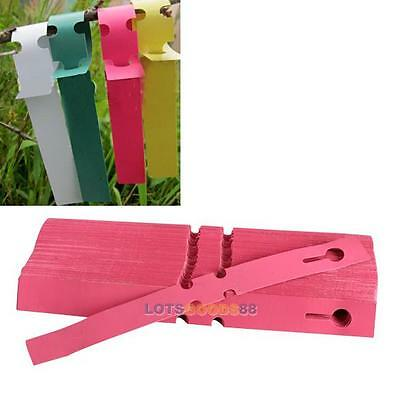 200PCS Plastic Plant Tree Hanging Markers Tags Nursery Seed Gardening Labels New