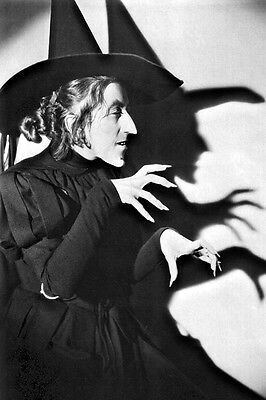New 5x7 Photo: Wizard of Oz Promotional Pic, The Wicked Witch of the West