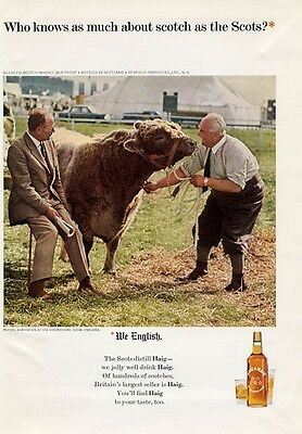 1965 Haig & Haig PRINT AD Scotch Vintage Bottle Bull at Oxfordshire Cattle Show