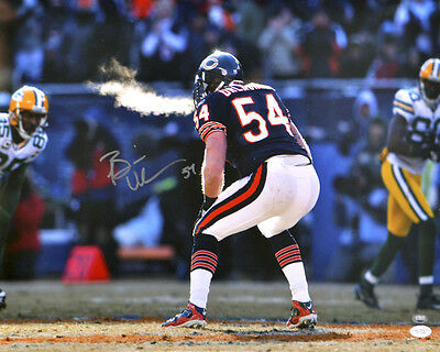 Chicago Bears 03 (Brian Urlacher)  American Football Signed Photo Print