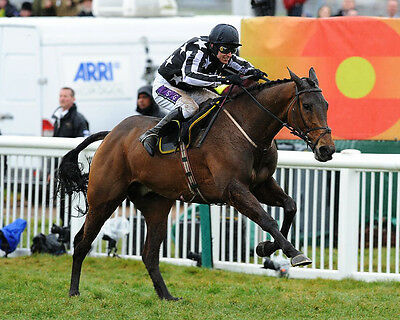 Imperial Commander Ridden By Paddy Brennan 01 (Horse Racing) Photo Print