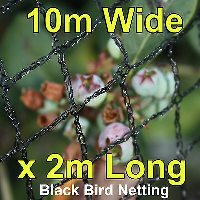 Commercial Knitted Anti Bird Netting 10 Metres Wide x  2 Metres Long - Black