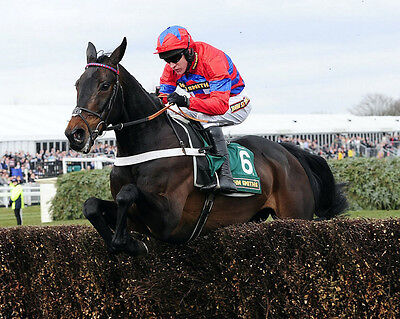 Sprinter Sacre 25 Ridden By Barry Geraghty (Horse Racing) Photo Print