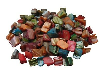 40g Natural Dyed Shell Nugget Beads Mixed Colours Per Pack 8mm - 10mm W136