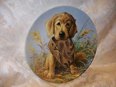 KNOWLES CAUGHT IN THE ACT GOLDEN RETRIEVER PLATE 1987 LYNN KAATZ 2ND ISSUE