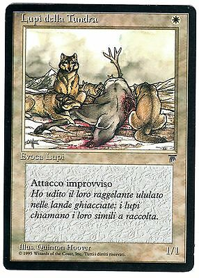 Lupi della Tundra - Tundra Wolves 1x (ITALIAN LEGENDS - Leggende) Magic card EXC