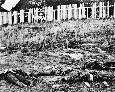 New 8x10 Civil War Photo: Dead Soldiers on the Antietam - Sharpsburg Battle