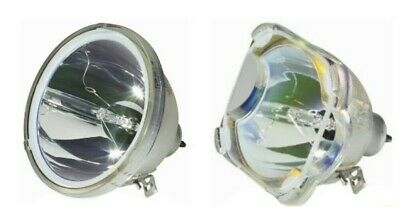Toshiba D85-LMP | D85 OEM Philips Replacement TV Lamp (Round or Square)
