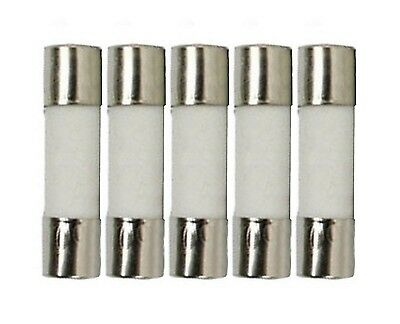 5 Qty. 5x20mm 8A Slow-Blow Ceramic Fuse T8a 250v