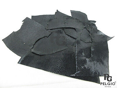 PELGIO Genuine Polished Stingray Skin Leather Hide Scraps 100 g Black Free Ship