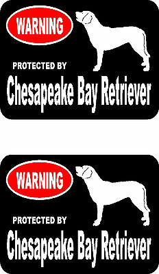 2 protected by Chesapeake Bay Retriever dog home window vinyl decals stickers