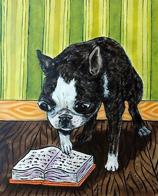 BOSTON TERRIER dog art 13x19  from painting - gift for librarian modern fo GLOS
