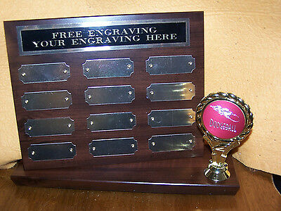 Dodgeball/kickball Stand Up Perpetual Plaque Trophy Award  Free Engraving!