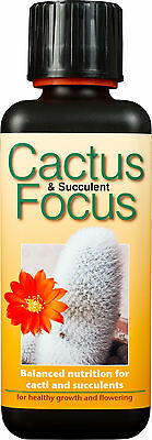 Cactus & Succulent Focus 300ml - Nutrients / Food for Cacti