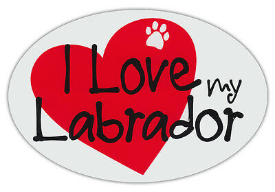 Oval Shaped Pet Magnets: I LOVE MY LABRADOR (Dogs) | Cars, Trucks, Refrigerators