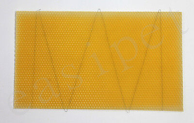 National Beehive Brood Box Wired Wax Foundation Sheets 10pcs Beekeeping New 181