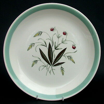 Vintage 1970's Alfred Meakin Hedgerow Pattern Large Size Dinner Plates 25cm VGC