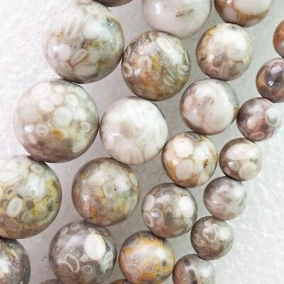 """6mm/8mm/10mm/12mm Genuine Natural Tree Fossil Round Loose Bead 15.5 """" LX-15"""