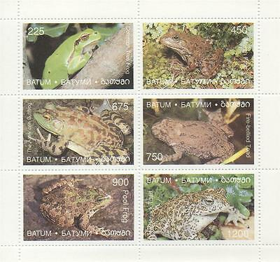 Frog/toad Reptile Bullfrog Firebellied Toad Marsh Frog Tree Frog Mnh Stamp Sheet