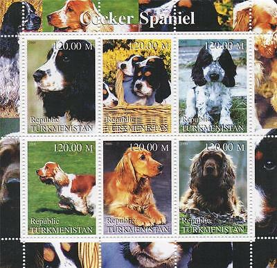 Cocker Spaniel Cute Puppy Dog Canine Turkmenistan 2000 Mnh Stamp Sheetlet