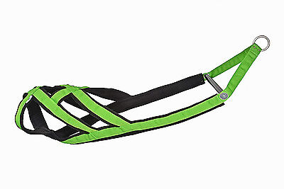 5cm wide Weight Pull Weightpulling Harness (pitbull, american bulldog etc.) MAG