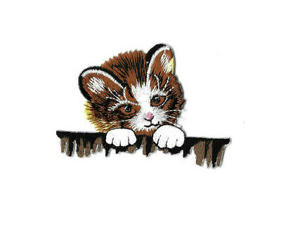 Kitten - Cat - Peeking Over Fence - Embroidered Iron On Applique Patch