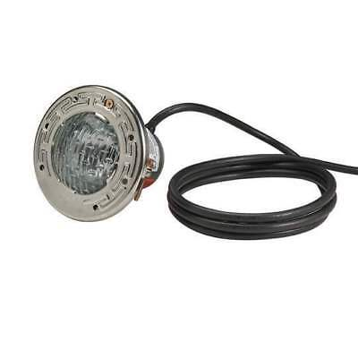 Pentair 77182500 AquaLight 75W 12V 100' Cord Pool Light