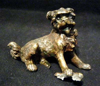 Austrian Cold Painted Bronze of a Seated Scruffy Lion type or Terrier Dog