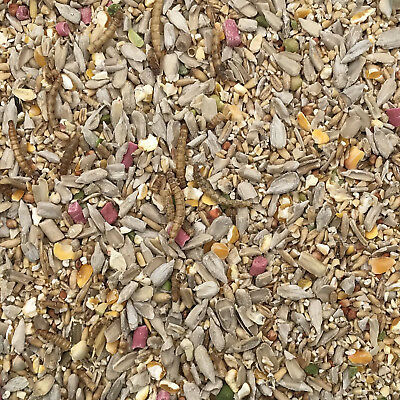20Kg Robin and Wild Bird Food Mix with Sunflower Hearts, Suet Pellets, Mealworms