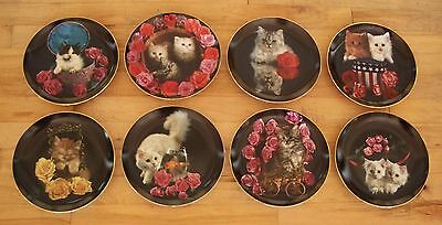 Complete Plate Set of 8 COMING UP ROSES Danbury Mint Cat Kitten Kitty Charming!