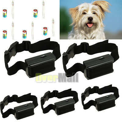 5 X Anti Bark No Barking Tone Shock Control Training Collar for Small Medium Dog