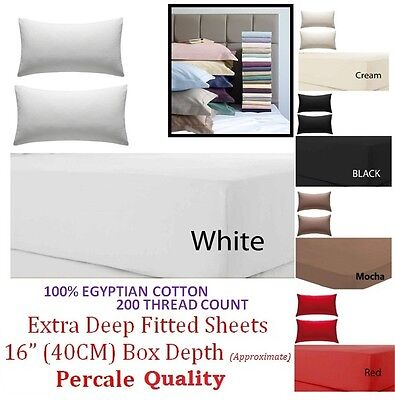 100% Egy Cotton 200Tc Extra Deep Fitted Sheet Single 4Ft. Double King Super King