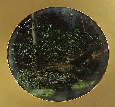 Spirits of the Wild FOREST SENTINEL Plate Camo Camouflage Eagle Wolf Bear ++