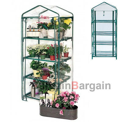 4 Tier Greenhouse Garden Plant Tall Apex Green Hot House Shed Storage PVC Cover