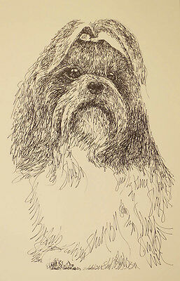 Shih Tzu Signed Dog Art Print #49 Kline adds your dogs name free. WORD DRAWING