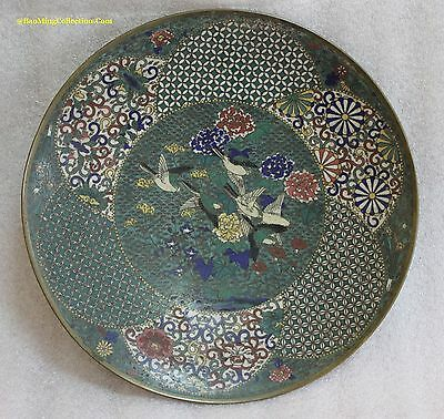 Antique Japanese Meiji Period Cloisonne Plate with Great Detail