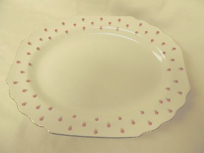 """W. S. George """"Blushing Rose"""" Lido Oval Serving Platter ~ 172A Made in USA"""