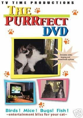 The PURRfect DVD, Brand new cat video, for Cats, free shipping, stocking stuffer