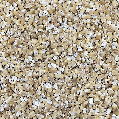 20Kg Pinhead Oatmeal for Wild Bird Food and suitable for Particle Fishing Mix
