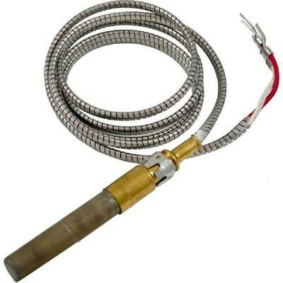 "Raypak 600019B Thermocouple 35"" 750MV Kit"