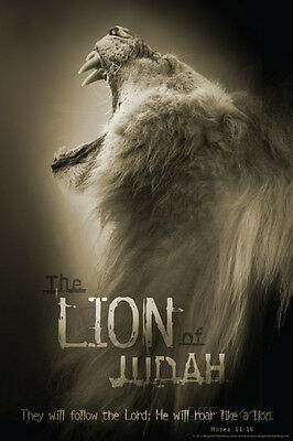 The Lion Of Judah Poster Print, 24x36