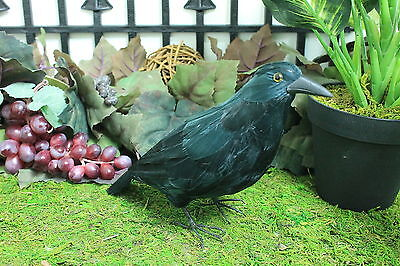 Black Crow Realistic Horror Haunted Halloween Raven Bird Crows Taxidermy Furry M